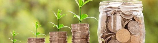 В накопительное страхование жизни можно инвестировать без ограничений